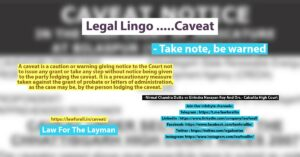 Legal Lingo